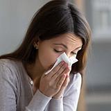 Allergy Prone